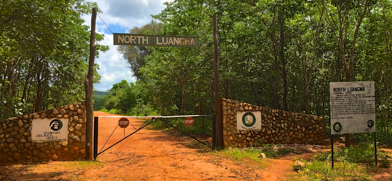 North Luangwa sees no more than a couple of hundred adventurous tourists per year