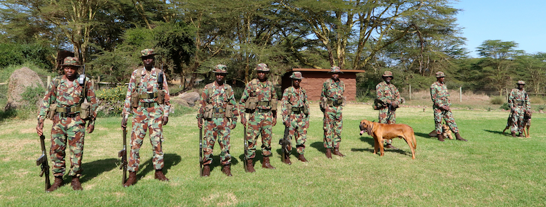 Lewa is the gold standard of law enforcement effectiveness and wildlife protection